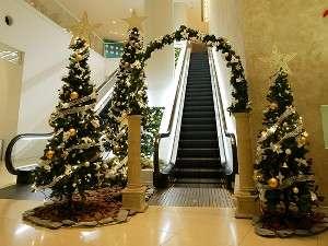 1階ロビーのクリスマスツリーが皆様をお迎えいたします!