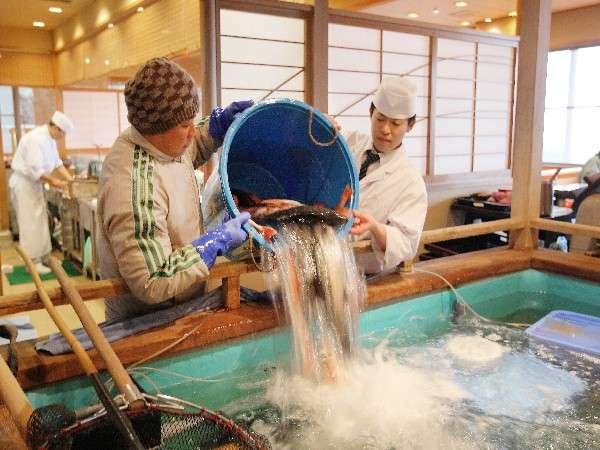 伊戸港よりの朝採れ地魚をイケスへ! 写真提供:じゃらんnet