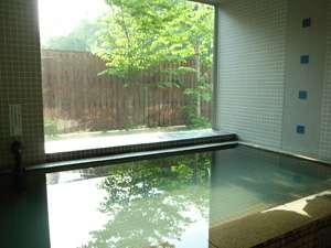 緑が映る日当たりの良い大浴場