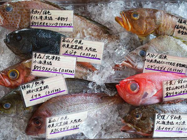 【土日祝日限定】北京ダックと羽田市場から届く、東北では珍しい魚などを目の前で選んで楽しむディナー付