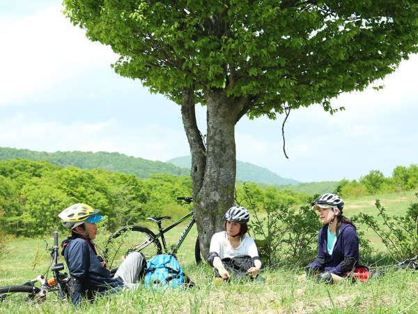 ◆【マウンテンバイク体験】周辺の見所を見ながら、八幡平の豊かな自然を間近で感じるマウンテンバイク体験