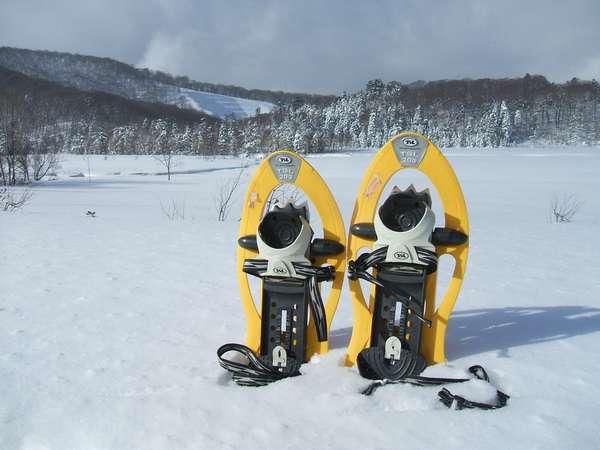 冬の爽やかな日は大沼スノートレッキング