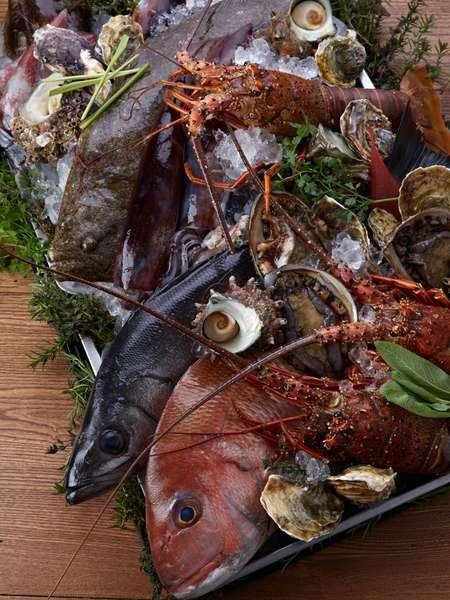 五島の新鮮な旬魚たち(一例)