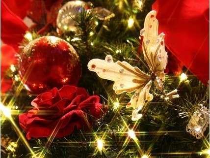 【2017クリスマスビュッフェ★11月25日〜12月25日】温泉リゾートで過ごす大人のクリスマス♪