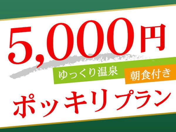 【5,000円ポッキリ】お仕事の後はゆっくり温泉! ビジネス朝食付き*和室利用も出来ます。