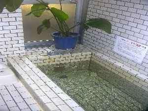 清潔なお風呂は足を伸ばして入れます