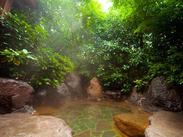 【天然温泉】緑と光に包まれた岩露天風呂