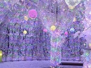 《11/11〜3/5まで!》【ホットココア付】冬を彩るイルミネーショントンネルを楽しもう!/バイキング