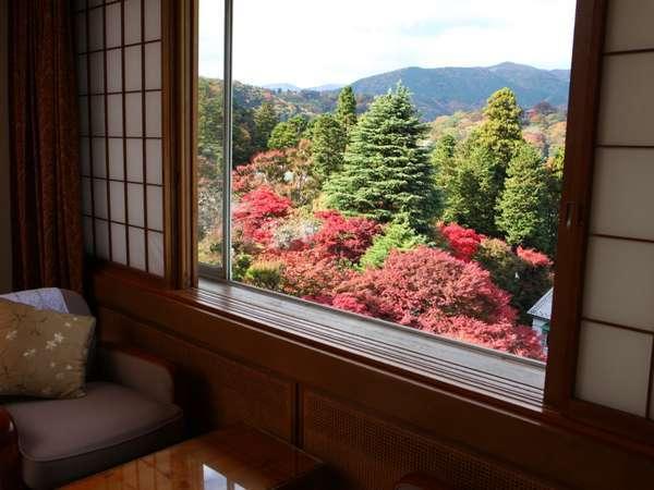 【眺望】フォレスト館の1室からの景色(庭園や、花御殿等のホテルの景色が望めるお部屋がございます)
