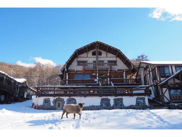 ホープロッヂ乗馬牧場 手作りログハウスの宿の外観