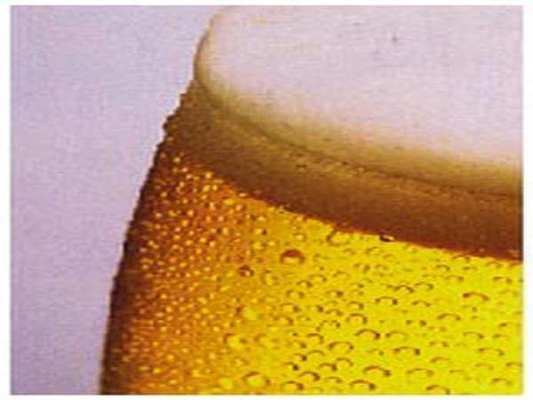 【90分飲み放題】生ビールで乾杯☆山梨の郷土料理ほうとう鍋付き和会席膳