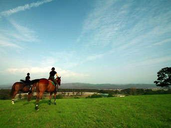 【アクティビティ体験シリーズ乗馬編】創作和フレンチフルコースと提携ファーム翌日乗馬体験ツアー
