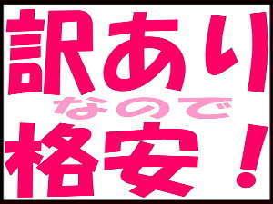 【朝食無】【5部屋限定 × 現金特価】 ◆眺め無しのお部屋でお得な訳ありプラン◆