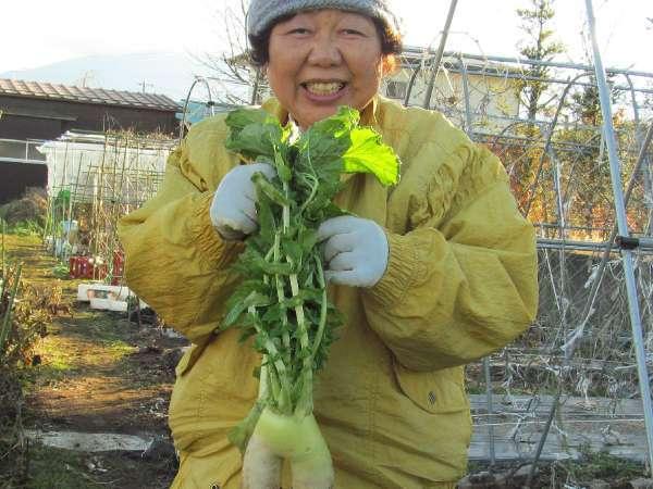 【1泊夕食】自家農園の採れたて野菜の手料理