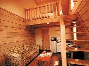 リビングの階段を上ると広いロフトのベッドルーム