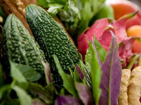 自家農牧場から採れる四季折々の有機野菜をふんだんに使用した安心・安全なお料理をご提供致します。
