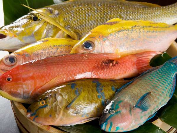 北谷漁港直送!!色とりどりの新鮮県産魚をご堪能頂けます。