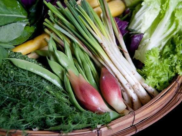 心を込めて育てた自家農牧場の食材だからこそ新鮮なままに真心込めてご提供する事を心がけております。