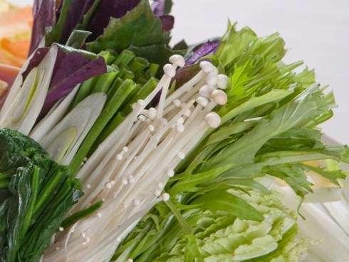 アグー豚を惹きたてる自家産有機野菜。素材の味を是非ともお愉しみ下さい。