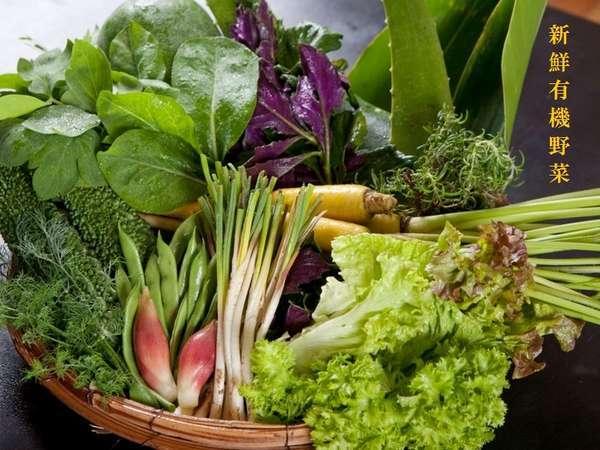 2013年も自家農牧場からのシャキシャキ有機野菜やアグー豚など新鮮食材を皆様へお届け致します。