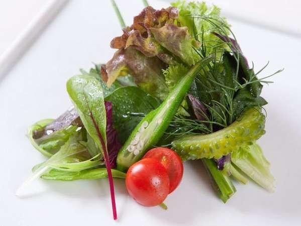 お肉もいいけど野菜もね♪自家産の有機野菜も一緒にご堪能下さいませ。