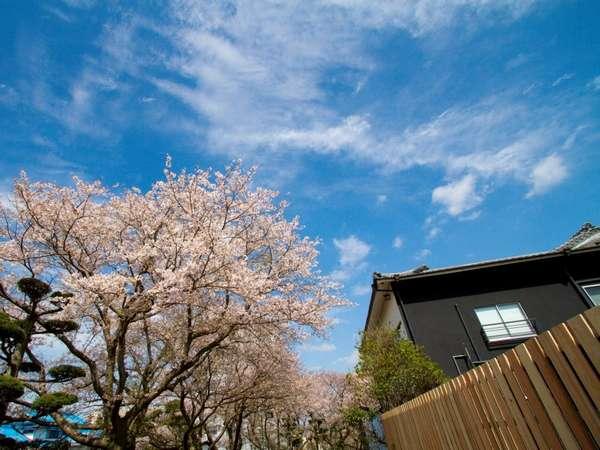 由緒正しき旅館が案内する、嬉野川沿いのモダン宿。それが吉田屋。