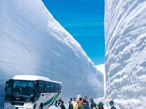 【立山黒部アルペンルート】「雪の大谷」。当館から駅まで徒歩五分。送迎もございます。