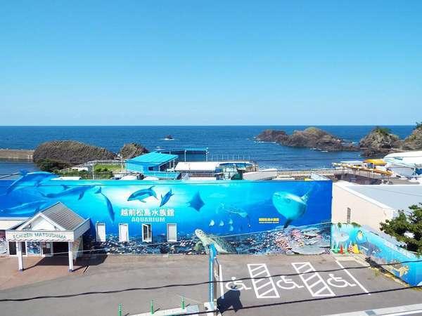 ◆<海鮮料理>と<越前松島水族館のチケット付>宿泊プラン