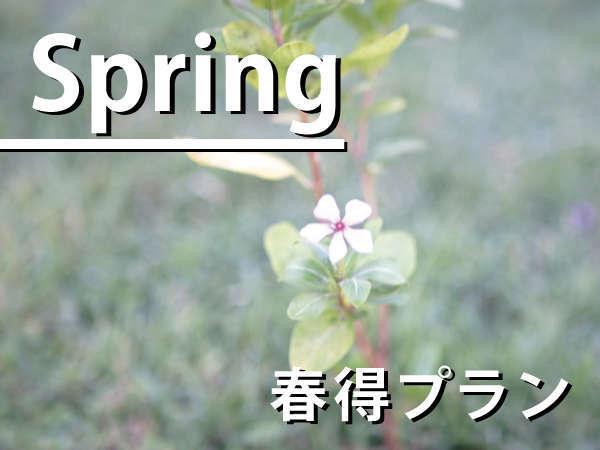 【春旅】シングル ユ−ス ( 1名様利用 )