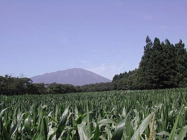 小岩井農場から見た夏の岩手山