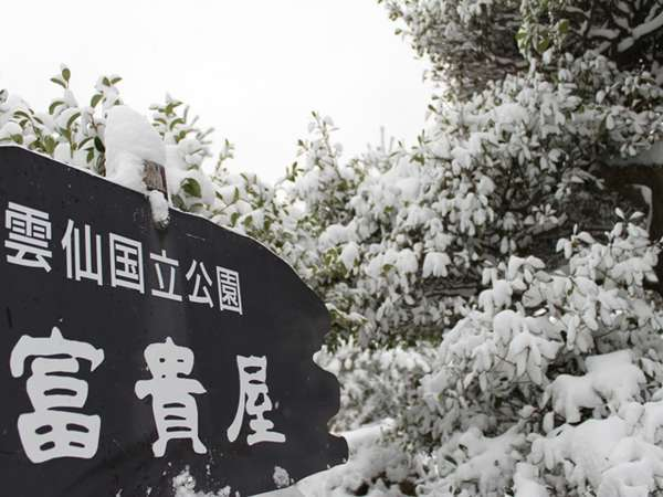 今年は雪がよく降りますね♪