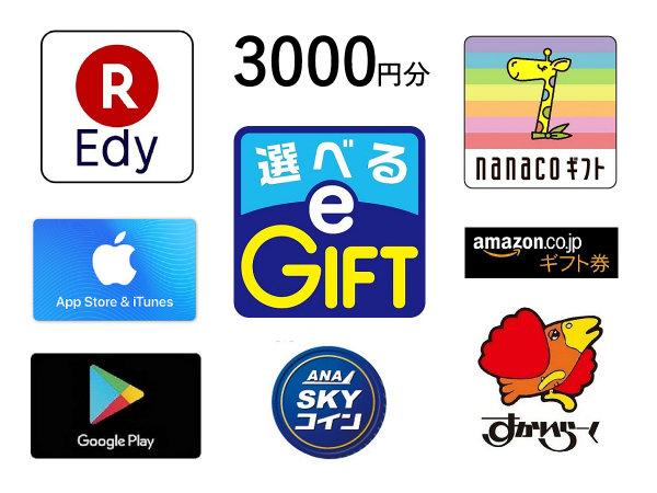 マルチギフトカード付 選べるe-GIFT 3000円分 素泊まり