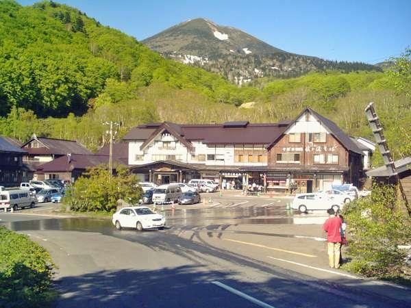 *【酸ヶ湯温泉旅館-外観】新緑の様子