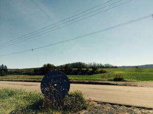 宿の前の牧草畑