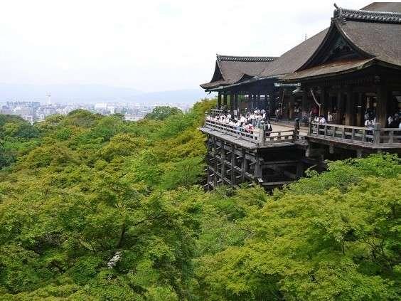 【京都市バス乗り放題】安くて便利!京都のバス1日乗り放題券付きプラン【食事なし】