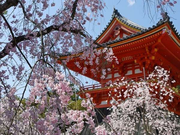 【京都市地下鉄バス乗り放題】京都観光1日乗車券付プラン【食事無】