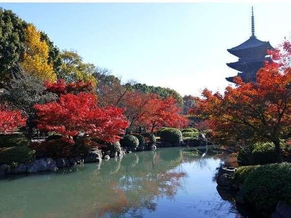 【京都市バス乗り放題】安くて便利!京都のバス1日乗り放題券付きプラン【朝食付き】
