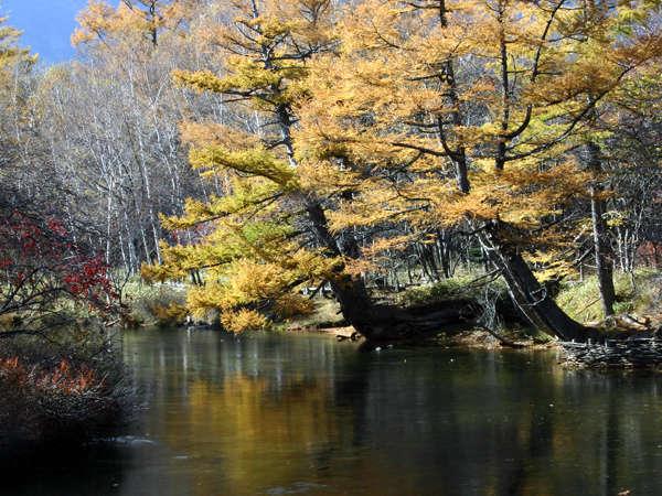 秋の湯川 写真提供:じゃらんnet