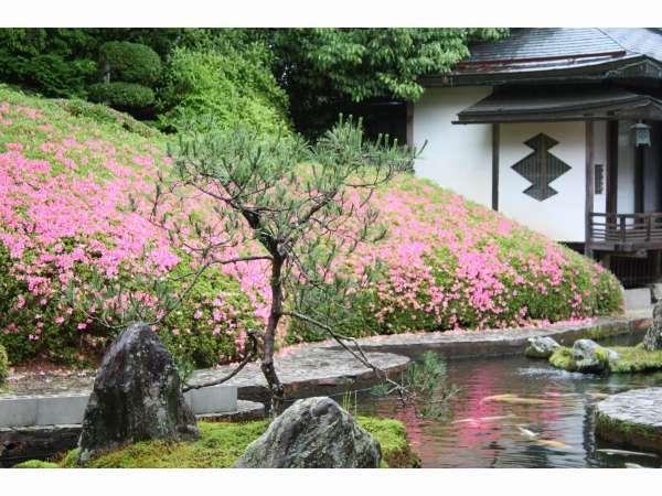 福智院のお庭、登仙庭の眺めです。