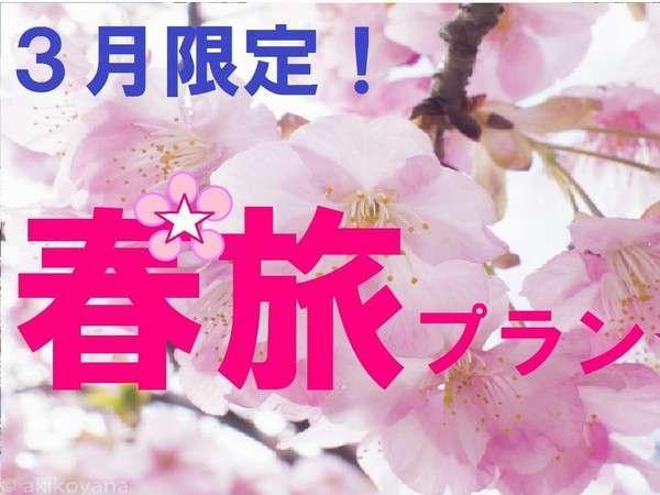 【3月限定】春旅☆室数限定バーゲンセール (素泊まり)