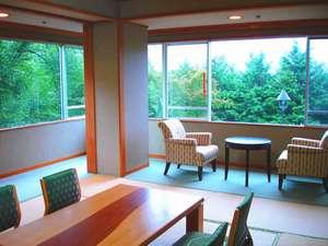 内庭や吉野川や阿讃山脈を望める和室