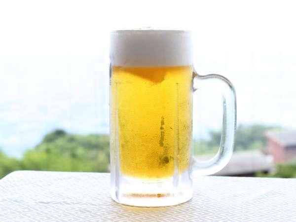 【じゃらん限定】★生(中ジョッキ)ビール1杯無料★◇◆鰹のたたき付土佐はちきん地鶏陶板焼き会席◆◇