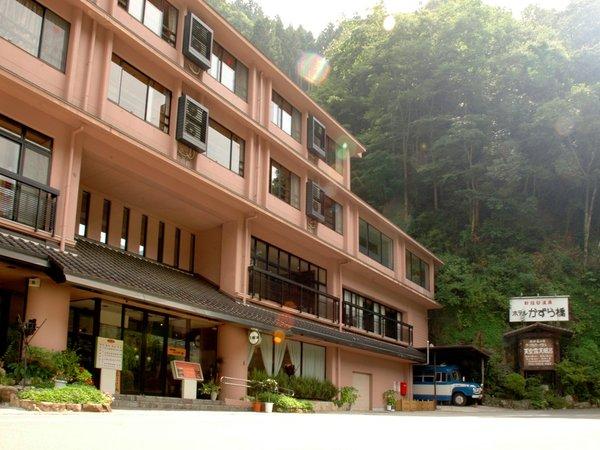 新祖谷温泉ホテルかずら橋