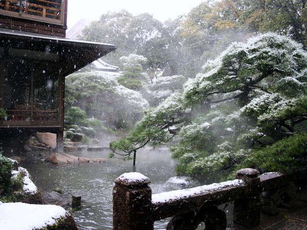年に数度しかご覧頂けない雪化粧した庭園