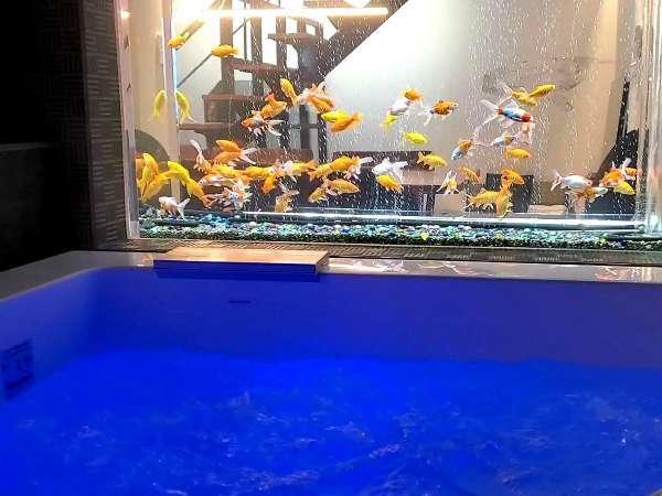金魚を見ながらのジャグジー体験。気になる視線を遮るバブルカーテン機能もあり