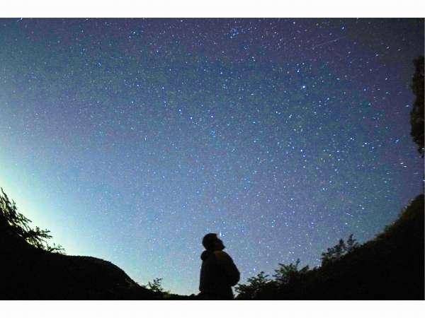 12/14限定☆海鮮バイキング×ふたご座流星群観測プラン