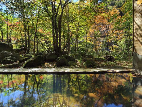 【大自然の湯「川の囁き」】温泉に映る秋の美しい風景に癒されます