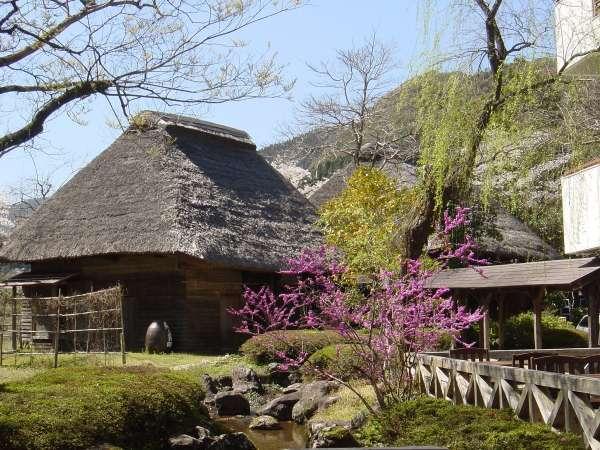 自然休養村センター 綾川荘 関連画像 1枚目 じゃらんnet提供