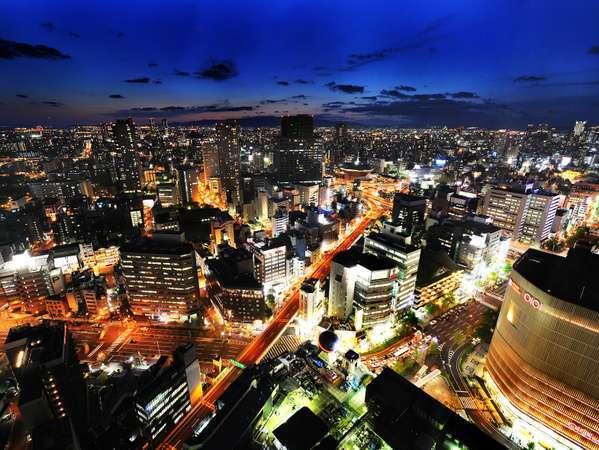 スイスホテル南海大阪の写真その3