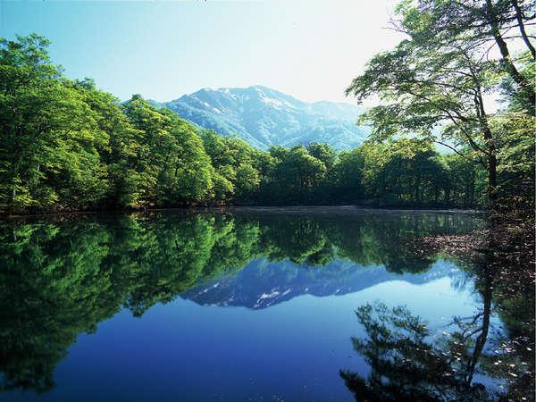 【周辺観光】刈込池新緑 周囲の自然を鏡のように映し出す姿に、多くの観光客が魅入られます